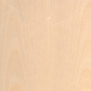 Birch White_Flat Cut