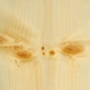 Pine Knotty_Flat Cut